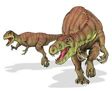 Sticker decal dinosaur dino jurassic wall children room kid decor 2 afrovenator