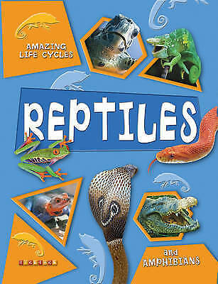 1 of 1 - Brian Williams, Amazing Life Cycles: Reptiles and Amphibians, Very Good Book