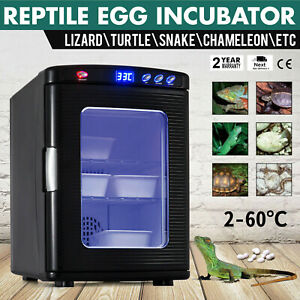 Reptile-Egg-Incubator-Pet-Turtle-Chicken-Chameleon-Goose-Brooder-Lizard