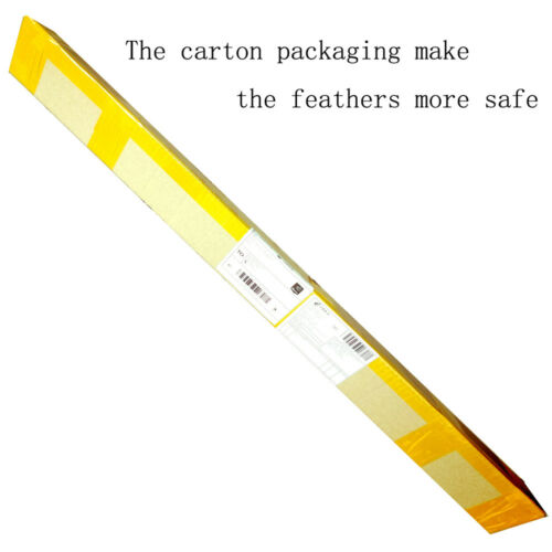3-30PK Fibreglass Archery Arrows with Bullet Tips Compound//Recurve Bow Practice