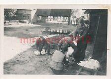 4 x Foto, Transportfahrer, Gänse rupfen in Polen 1939 (W)1655