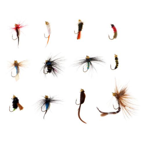 12x Allzweck Trockenfliege Angelhaken Streamer Lure Kit Fliegenfischen