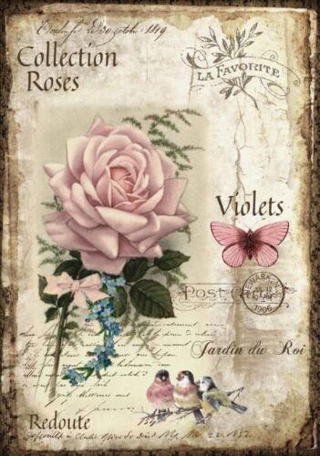 BÜGELBILD-Vintage-Shabby-Nostalgie-French-Rose-3279
