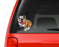 English Bulldog Art Full Color Auto Vinyl Decal Sticker Or Any Smooth Surface