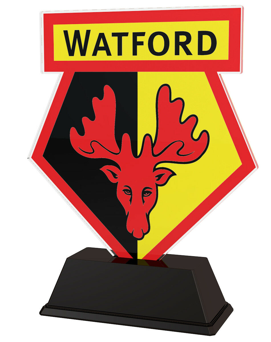 15x FOOTBALL CLUB CLUB CLUB LOGO PRINTED CUSTOM 100mm ACRYLIC TROPHIES FREE ENGRAVING b9ba09