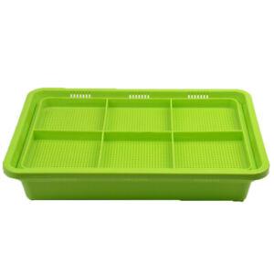 1pc-Premium-Seed-Sprouter-Tray-Soil-Free-PP-BPA-Free-Big-Capacity-Sprouting-Kit