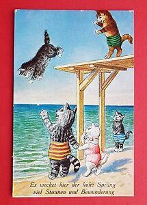 AK-KATZE-1936-Katzen-in-Menschengestalt-beim-baden-19791
