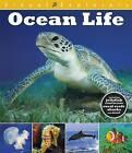 Ocean Life by Paul Calver, Toby Reynolds (Hardback, 2015)