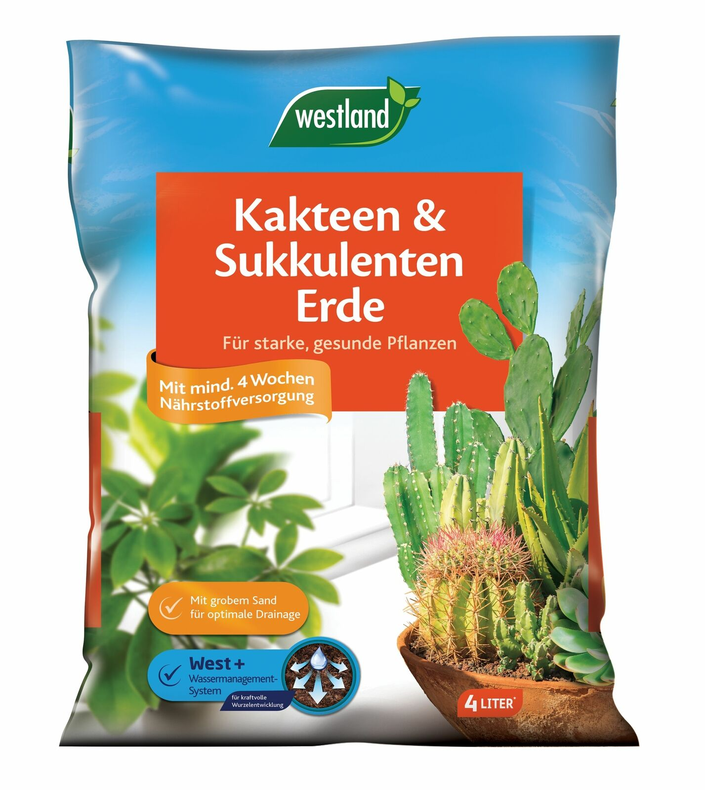 Westland Cactus And Succulents Earth, 4 Litre