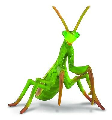 Praying Mantis 4 5//16in Wild Animals Collecta 88351