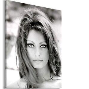 SOPHIA-LOREN-ITALIAN-ACTRESS-SINGER-Canvas-Wall-Art-Picture-SL8-X-MATAGA