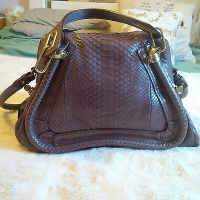 Brand New Chloe Paraty Medium in Python Leather ini Mauve Color