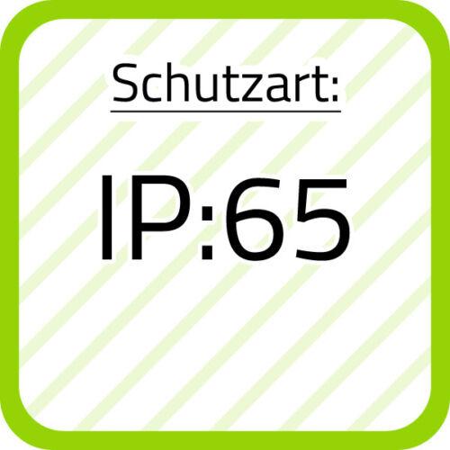 Werma Dauerleuchte WM 20310000 IP65 Dauerleuchten 203.100.00 Dauerleuchte