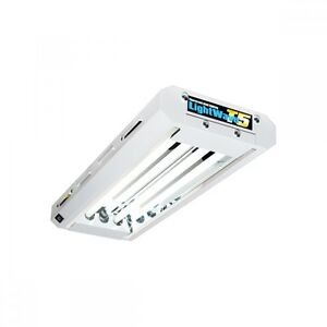 Lightwave t5 2 tube grow light