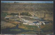 Postcard BUHL Idaho/ID  Snake River Trout Farm Bird's Eye Aerial view 1950's