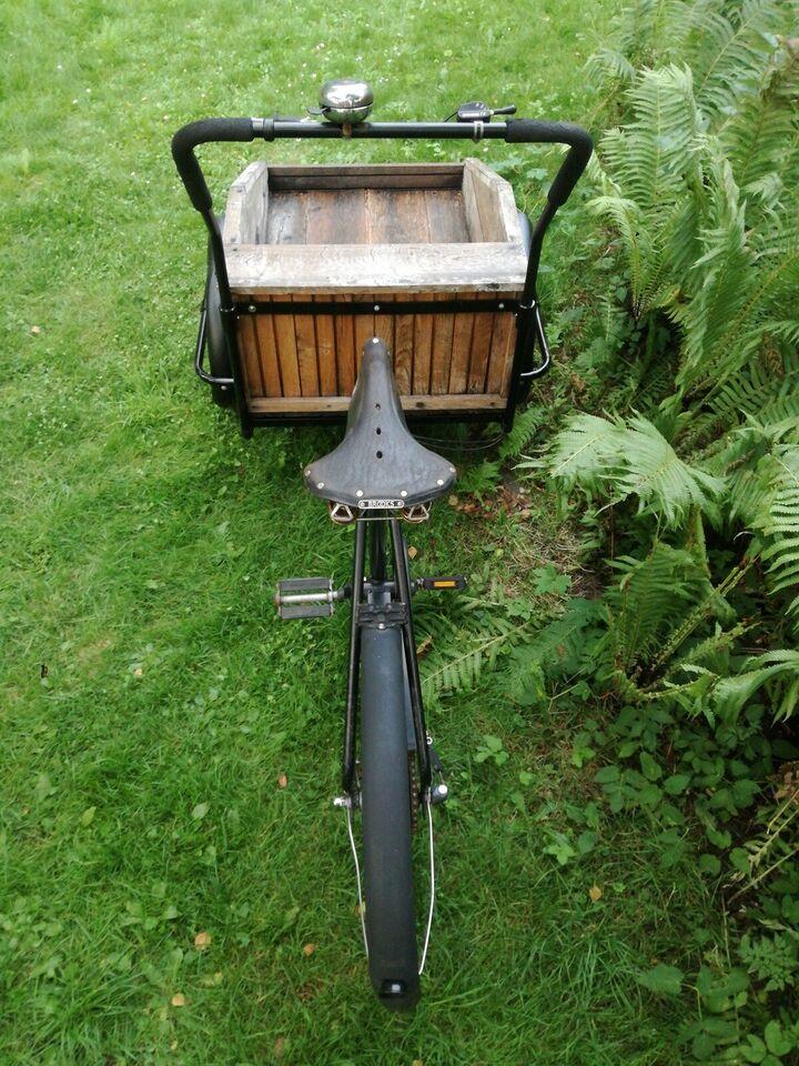 Ladcykel, Esimex, 3 gear