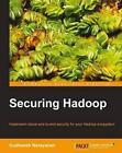 Securing Hadoop by Sudheesh Narayanan, S. Narayanan (Paperback, 2013)