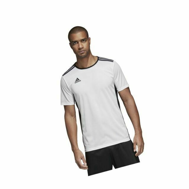 adidas Men's Entrada 18 Aeroready Primegreen Regular White/black ...
