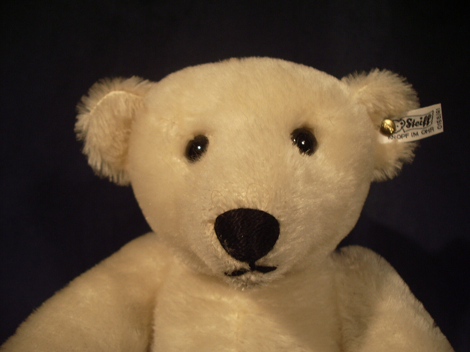 STEIFF Blonde Bear 15  bianca Tag 158/41 Mohair Pelle Paws 1985 W. Germany