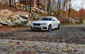 2017 BMW M2 -