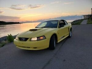 2003 Ford Mustang Automatic v6