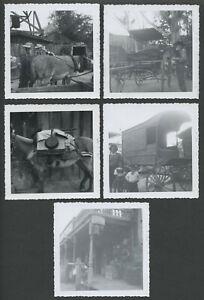 Lot-of-Five-1960-KNOTT-039-S-BERRY-FARM-AMUSEMENT-PARK-Snapshot-Photographs