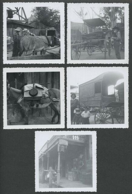 Lot of Five 1960 KNOTT'S BERRY FARM AMUSEMENT PARK Snapshot Photographs
