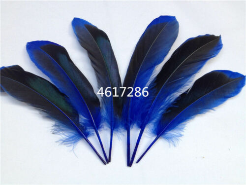 """FEATHERS DUCK 10 x 2 Tone ROYAL BLUE  Approx 4/"""" 5/""""UK Seller Brand New Stock."""