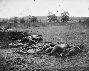 Battle of Gettysburg - The Wheatfield