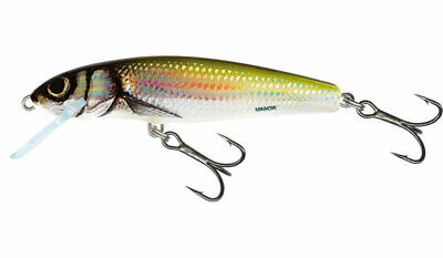 "Salmo Thrill 7 Sinking TH7S-HB Holographic Bleak 2 3//4/"" 1//2 oz Lure"