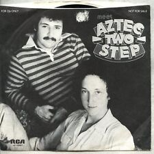 """VINYL EP 7"""" & Picture Sleeve Aztec Two-Step - Meet Aztec Two-Step promo"""