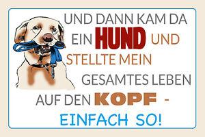 Then Kam Ein Dog Tin Sign Shield Arched Metal 20 X 30 CM W1210