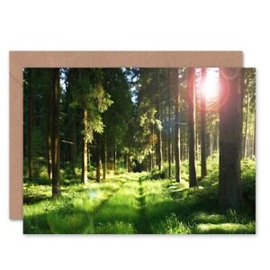 Birthday-Painting-Sunlit-Forest-Scene-Blank-Greeting-Card-With-Envelope