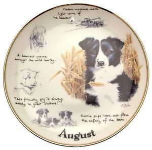 Danbury-Mint-Border-Collie-plate-August-Paul-Doyle-Dog-Plates-CP2162