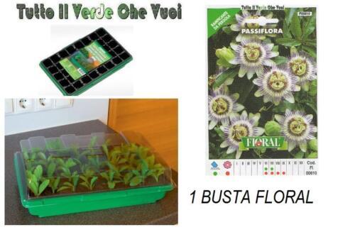 1 BUSTA A SCELTA SERIE FLORAL VASSOIO MINISERRA 1X40 VASETTI STOCKER