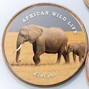 Somaliland-1-shilling-2018-UNC-African-Elephant-unusual-coin