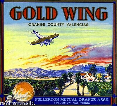 Fullerton Green Wing Mallard Duck Orange Citrus Fruit Crate Label Art Print