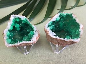 Green-Geode-Pair-W-Stands-Geode-Crystal-Quartz-Druze-Specimen-Morocco-Geode-Half