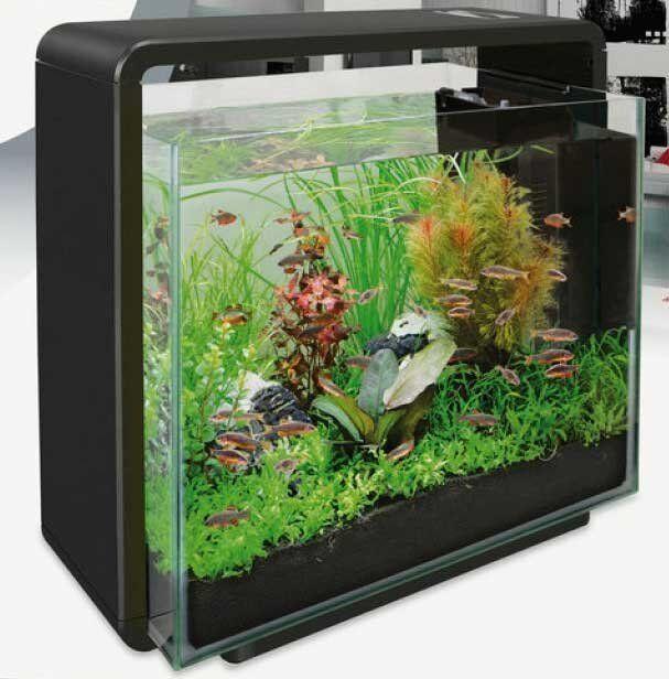 2448949bdbc Superfish Home 40 Aquarium Glass Fish Tank Black 40l With Filter   LED Light  for sale online