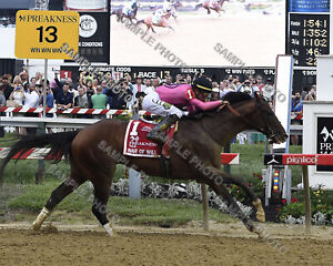 2019-PREAKNESS-STAKES-WAR-OF-WILL-PIMLICO-TYLER-GAFFALIONE-8x10-PHOTO