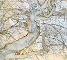 The Summer Storm Journals * by Noe Venable (CD, Nov-2007, Petridish/Veriditas)