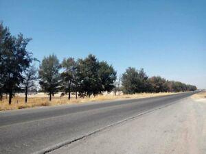 Terreno en renta, Betulia, Jalisco, Carretera SLP - AGS, LOTE 7, TTR 390054.
