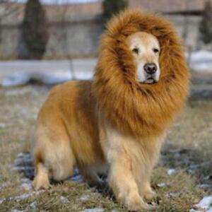 Pet-Costume-Lion-Mane-Wig-for-Large-Dog-Halloween-Clothes-Dress-Light-Brown-JS