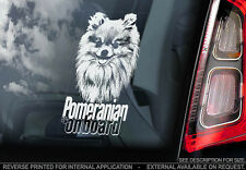 Pomeranian - Car Window Sticker - Dog Sign -V03