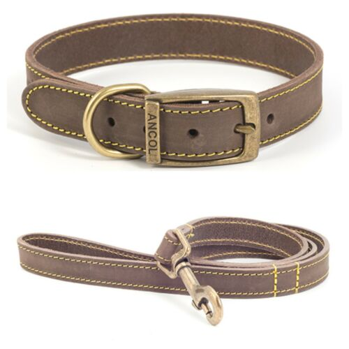 Ancol Timberwolf bridle leather collar and lead set.Blue,Brown,Grey,Tan.XS-L