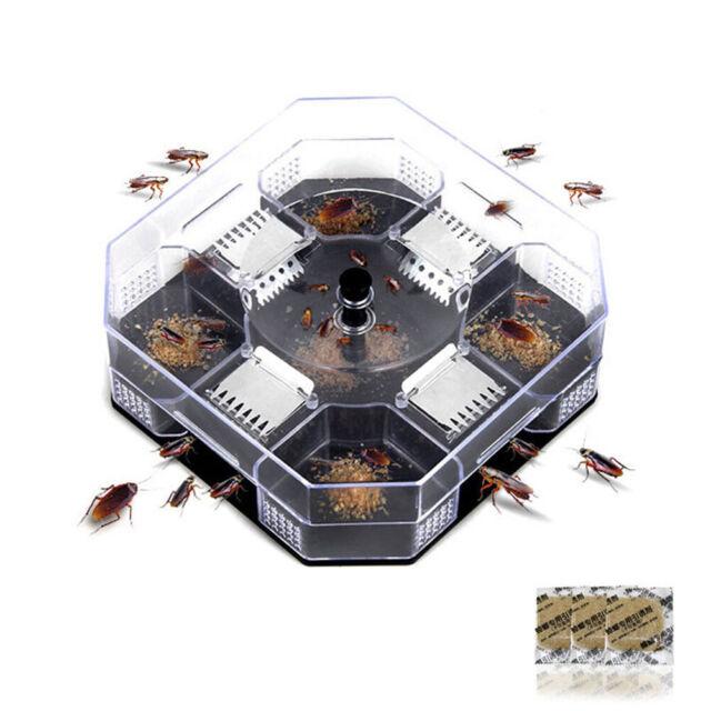 Blattes Pi/ège Box Bug M/énages Efficace Cockroach Catcher R/éutilisables Cafard Pi/ège App/ât Pour Home Office Cuisine 1set