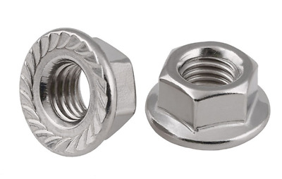 304 Stainless Steel Quantity 20 M8 Serrated Flange Hex Lock Nuts Bright Finish