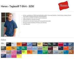 Hanes 5250 Tagless T Shirts Blank Bulk Lot Colors Or White