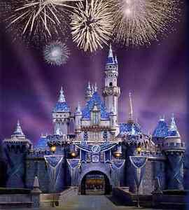 8x8FT Fireworks Palace Castle Entrance Custom Photo Background Backdrop Vinyl