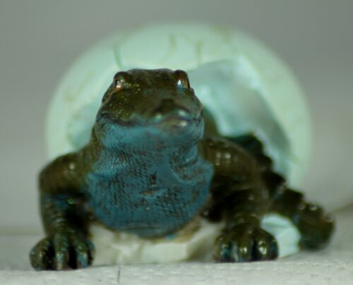 a Reptile Lover or Terrarium Owner/'s Gift Baby Crocodile Hatching from Egg
